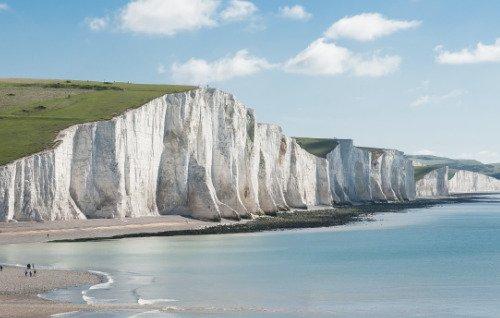 Pest Control in East Sussex
