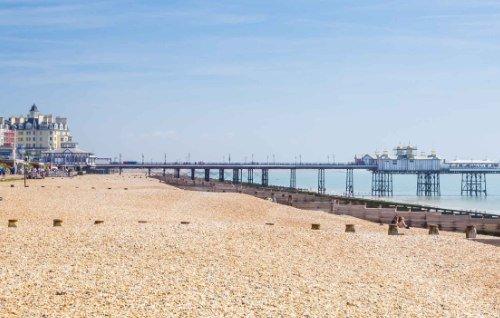 Eastbourne Pest Control services